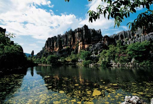 Stone Forest Geopark Shilin Geopark Global Network Of